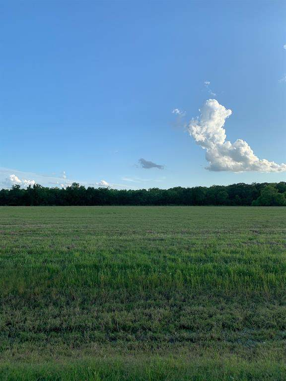 442 Pony Trail, Angleton, TX 77515 (MLS #69675208) :: Connect Realty