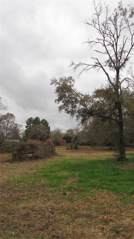 43A Deer Haven Circle, Willis, TX 77378 (MLS #69813665) :: The SOLD by George Team