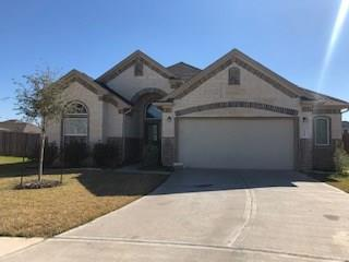 3204 Sunflower Drive, Texas City, TX 77591 (MLS #70025740) :: The Sold By Valdez Team
