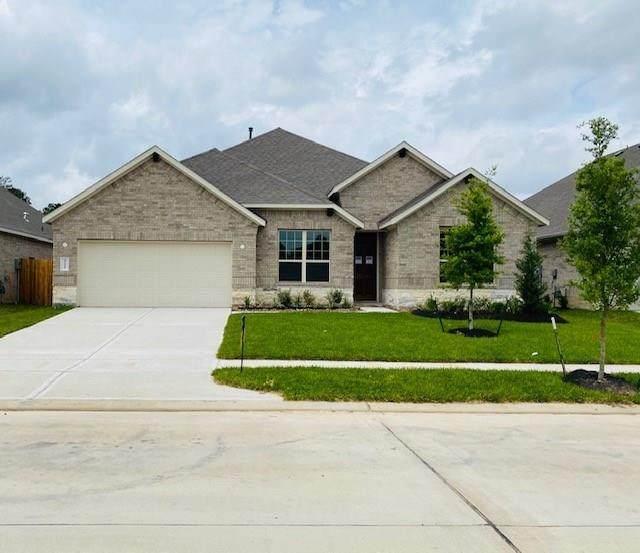 27912 Parkside Creek, Other, TX 77386 (MLS #70028241) :: The Queen Team