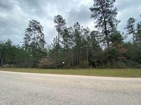000 Grand View, Huntsville, TX 77340 (MLS #71600004) :: The Freund Group