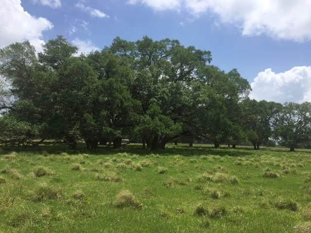 25 County Road 32, Angleton, TX 77515 (MLS #71821988) :: The Heyl Group at Keller Williams