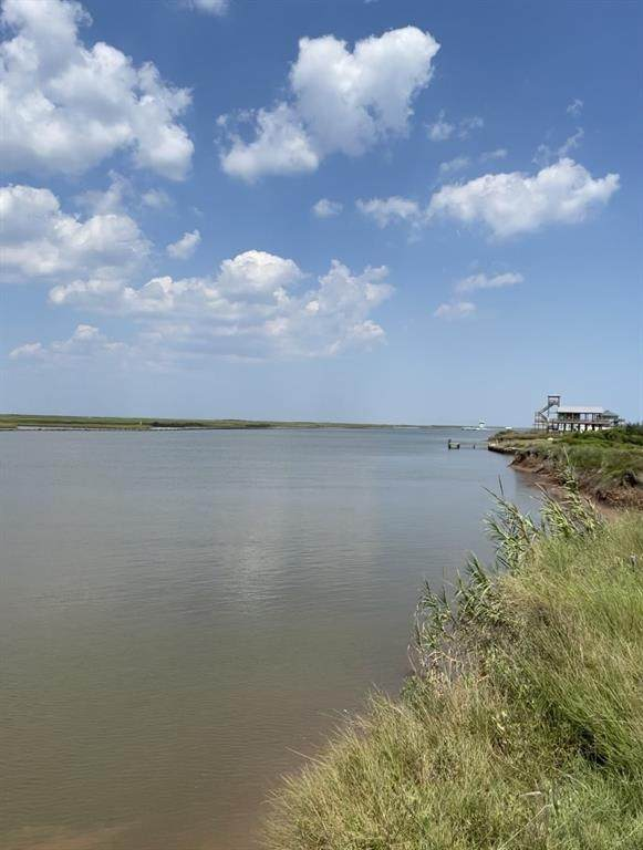 0 Cr 230 Canal Drive, Sargent, TX 77414 (MLS #72143236) :: Christy Buck Team