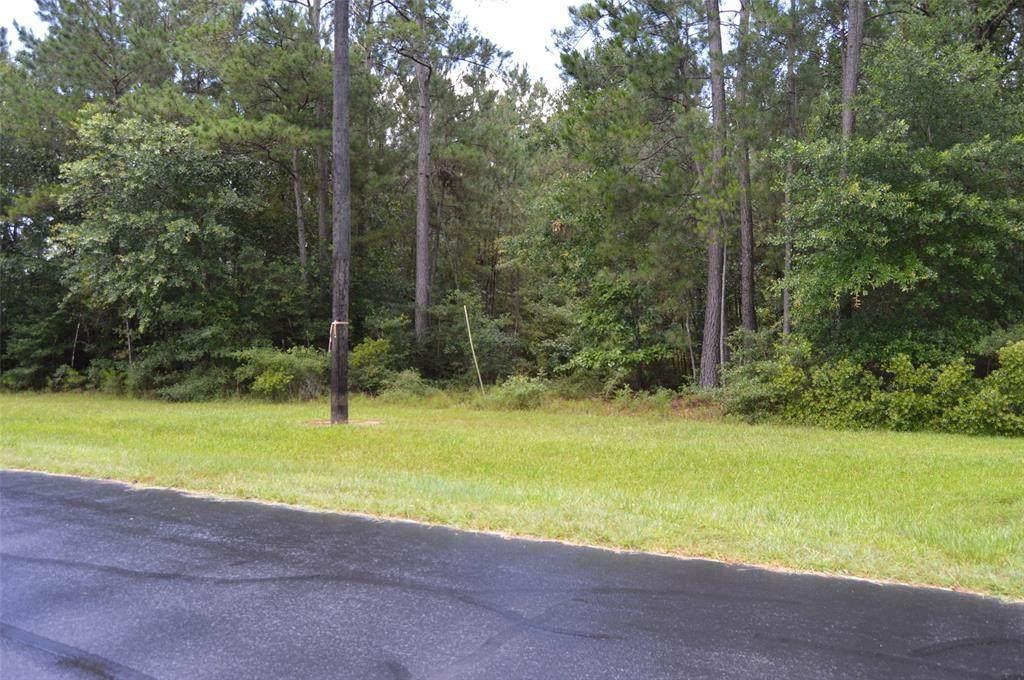 30067 Round Up Drive - Photo 1