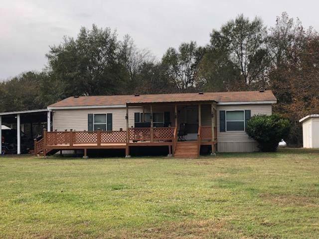 479 Buckhorn Road, Karnack, TX 75661 (MLS #73139754) :: Texas Home Shop Realty