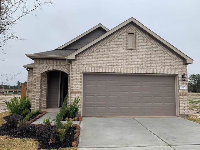 100403 Liberty Cap Drive, Iowa Colony, TX 77583 (MLS #73679410) :: The SOLD by George Team