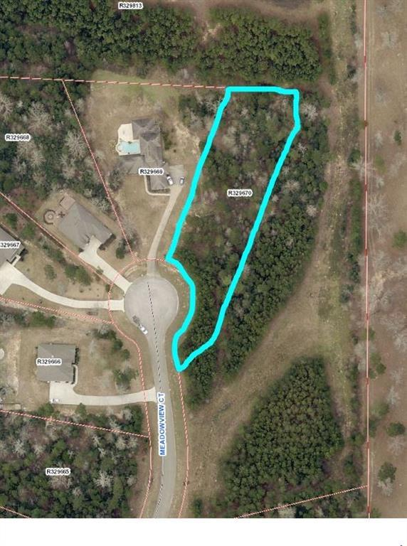 355 Meadowview Court, Montgomery, TX 77316 (MLS #73882797) :: Fairwater Westmont Real Estate