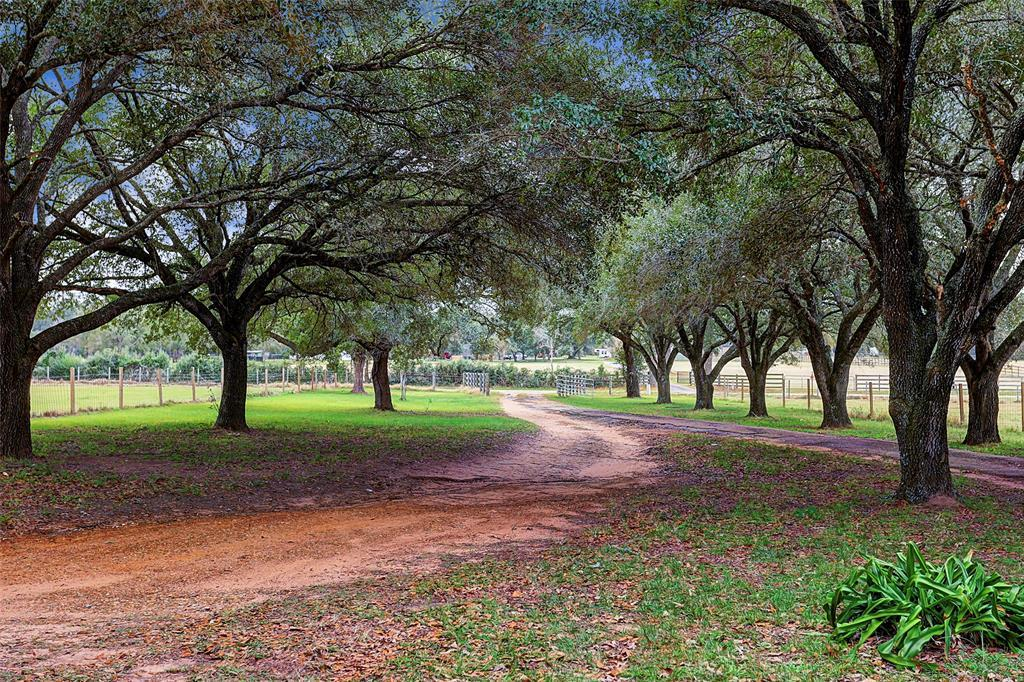 0 Magnolia - Photo 1