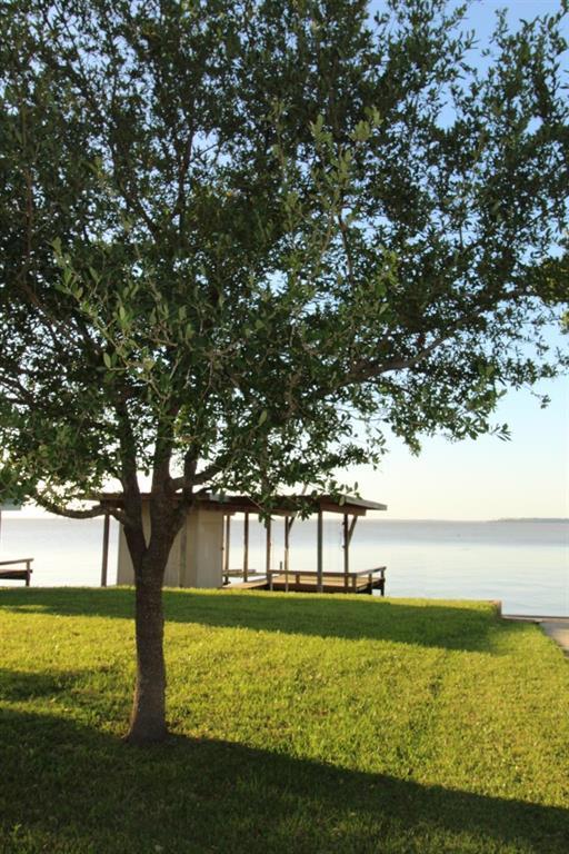 121 Paradise Trail, Coldspring, TX 77331 (MLS #74309624) :: NewHomePrograms.com LLC