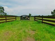 1560 County Road 2270, Cleveland, TX 77327 (MLS #74476270) :: The SOLD by George Team