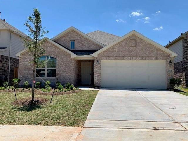 983 Golden Willow Lane, Conroe, TX 77304 (MLS #74527366) :: The Sansone Group