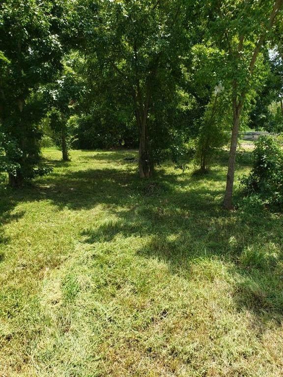 1029 Marjorie Street, Houston, TX 77088 (MLS #74599205) :: Green Residential