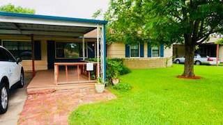 12021 Palmfree Street, Houston, TX 77034 (MLS #74658175) :: TEXdot Realtors, Inc.