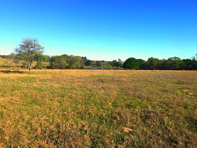 0000 Old Navasota Road, Brenham, TX 77833 (MLS #74861134) :: Giorgi Real Estate Group