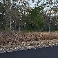 32118 Bayou Bend - Photo 1