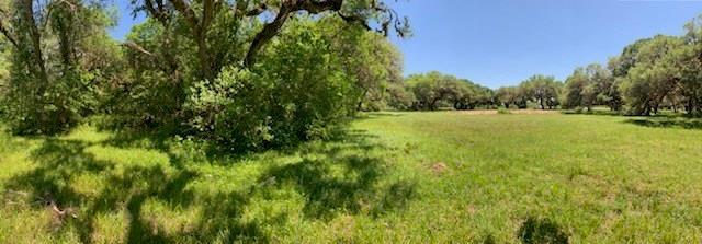 3065 Vaquero Drive, Palacios, TX 77465 (MLS #74952135) :: Texas Home Shop Realty