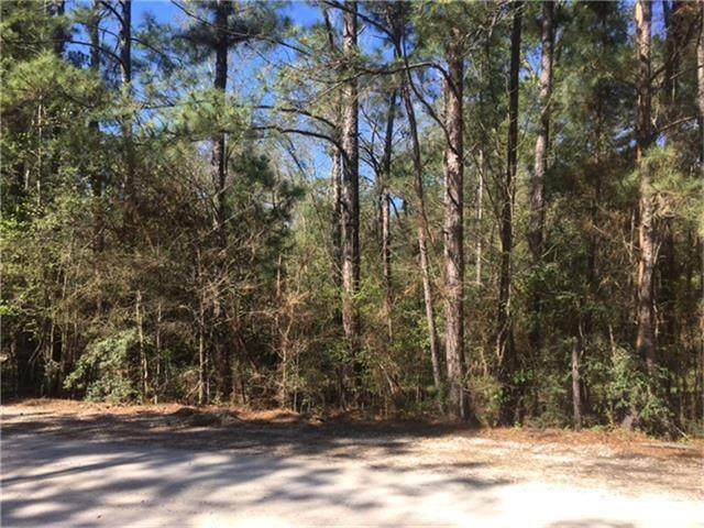 000 Walnut Court, Huntsville, TX 77320 (MLS #74955845) :: Caskey Realty