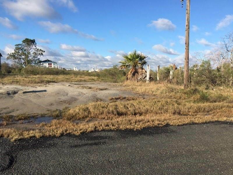 1351 Trinidad Lane - Photo 1