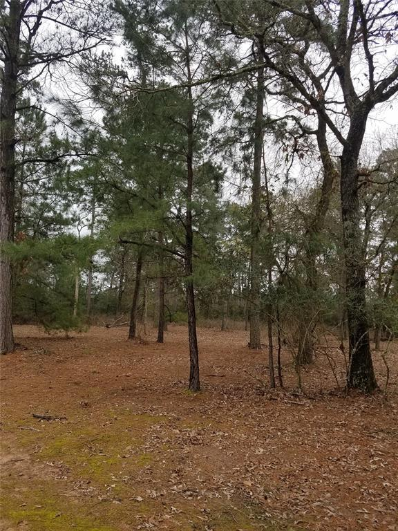 LOT 17 Gromwell, Magnolia, TX 77355 (MLS #75341955) :: Texas Home Shop Realty
