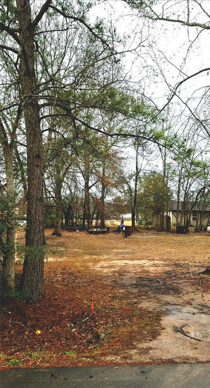 TBD Michael Street, Cleveland, TX 77328 (MLS #75720378) :: The SOLD by George Team