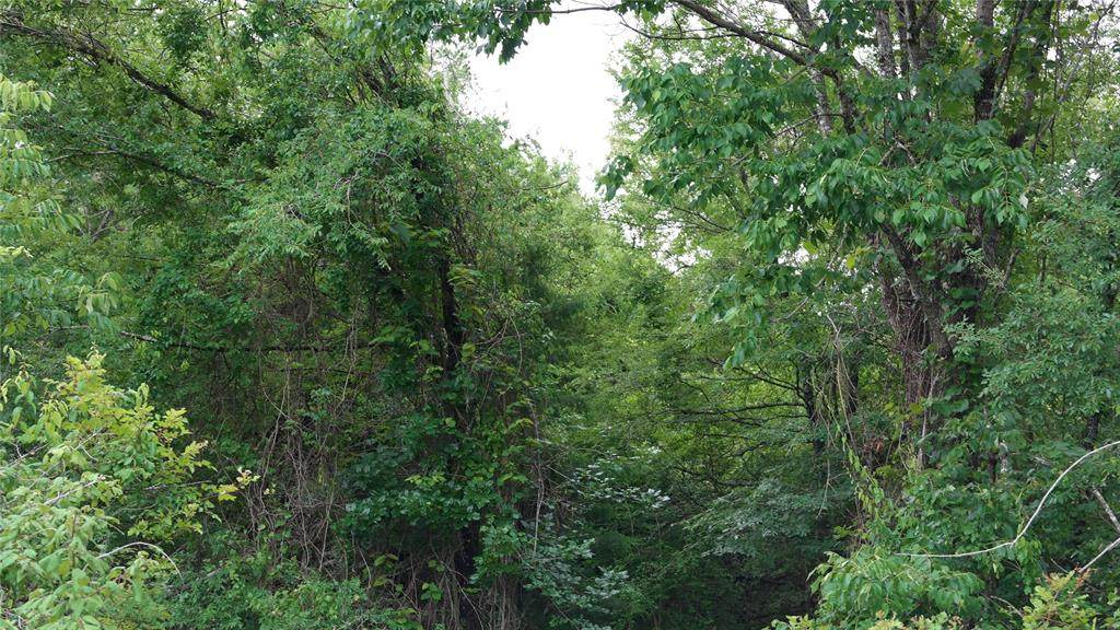 TBD-0 N I 45 Feeder Road - Photo 1