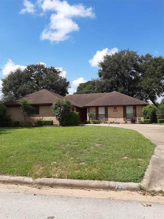233 Elm Street, Prairie View, TX 77484 (MLS #7610488) :: The SOLD by George Team