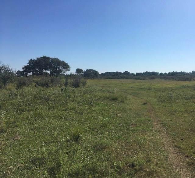 0 Gene Mcgill Lane, Seadrift, TX 77983 (MLS #7614575) :: Phyllis Foster Real Estate