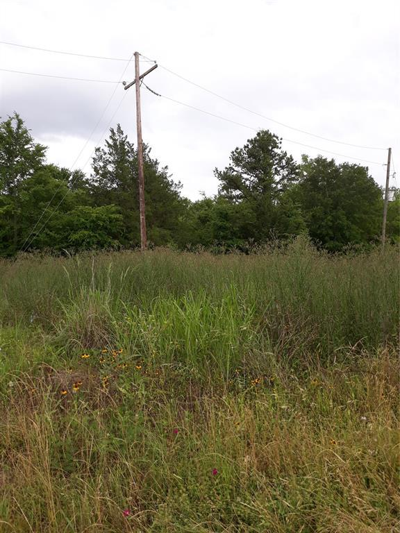 2 Acres Tbd State Highway 19, Huntsville, TX 77320 (MLS #76350766) :: Texas Home Shop Realty