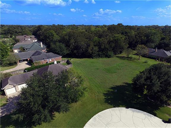 33231 Whitley Court, Fulshear, TX 77441 (MLS #76840763) :: See Tim Sell