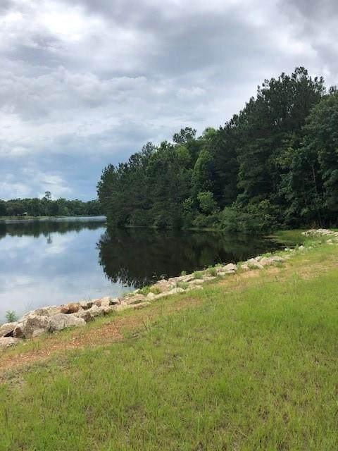 210 Fish Creek Thoroughfare - Photo 1