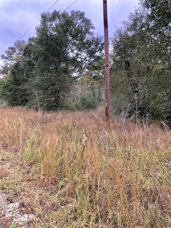 0 South Bonnie Lake Dr, Hempstead, TX 77445 (MLS #77452723) :: Fairwater Westmont Real Estate