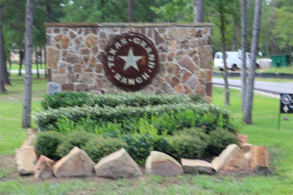 000 Texas Grand Road - Photo 1