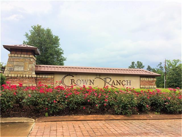 26160 Enzos Way, Montgomery, TX 77316 (MLS #77956094) :: Fairwater Westmont Real Estate