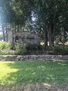 42 Green Tree Drive, Coldspring, TX 77331 (MLS #78096523) :: Magnolia Realty