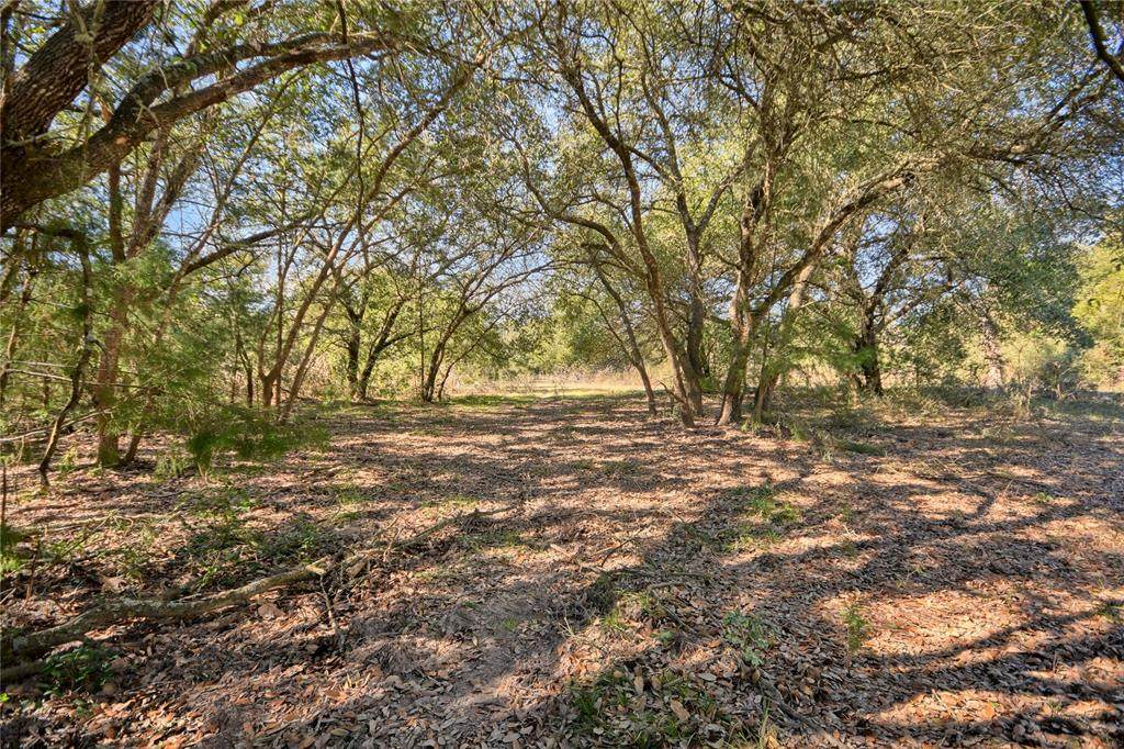 1240 Weyand Rd Lot 9 - Photo 1
