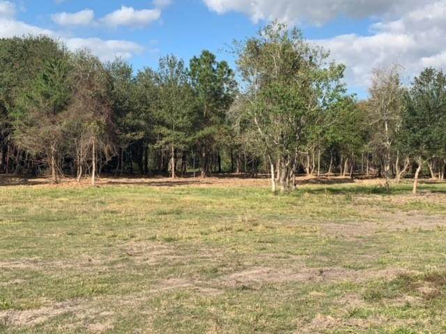 2820 County Road 160 Lot 33, Alvin, TX 77511 (MLS #79551676) :: The Bly Team