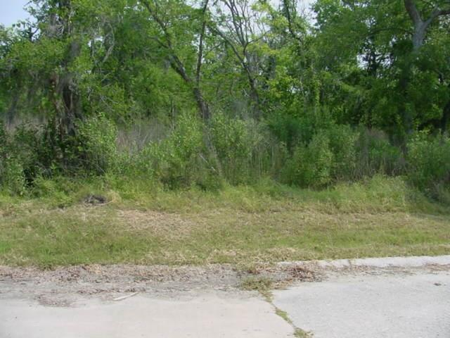 0 Yaupon Drive, Baytown, TX 77520 (MLS #79630554) :: Giorgi Real Estate Group