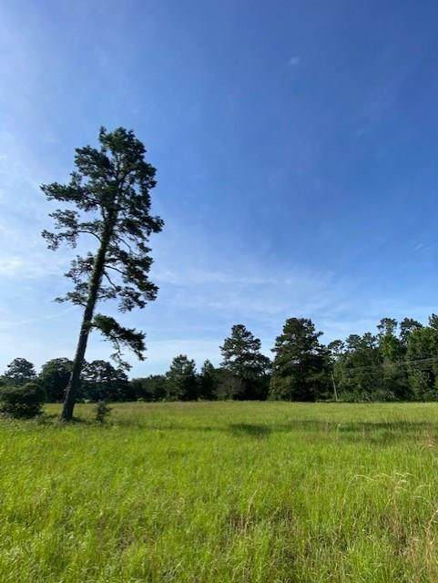 Lot 5 Cedar Lane Loop, Willis, TX 77378 (MLS #79890536) :: Guevara Backman