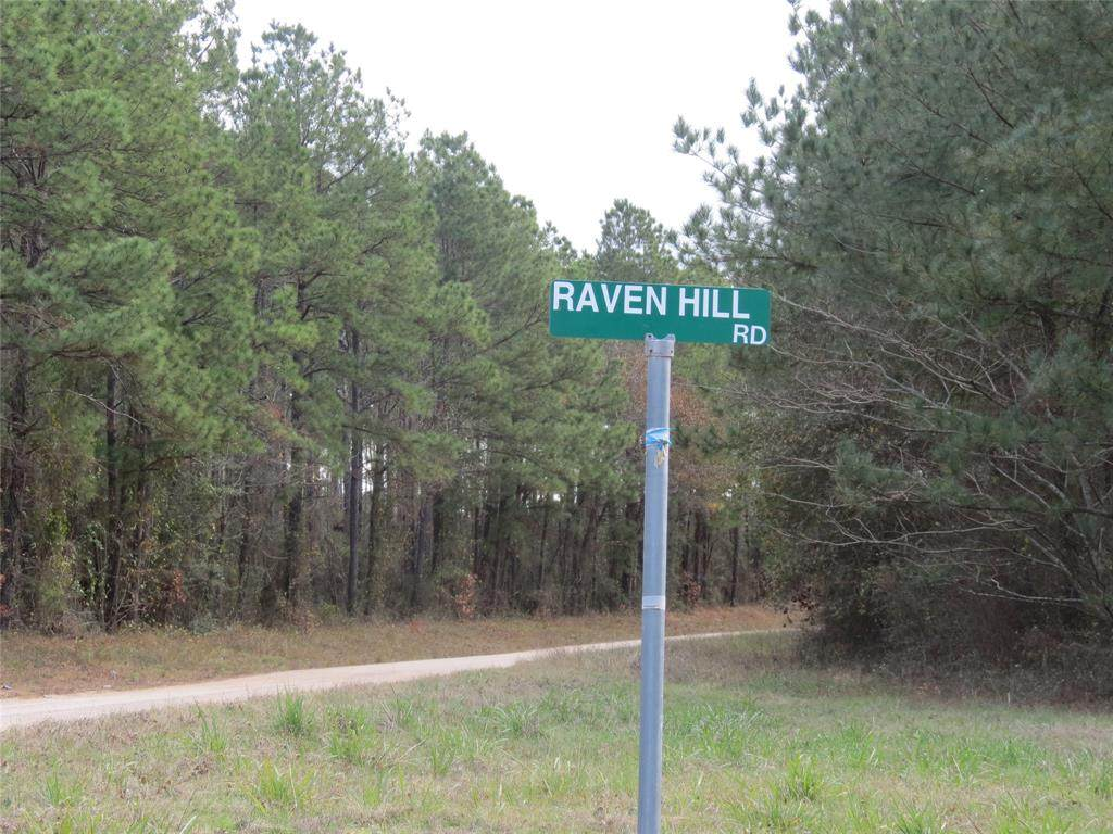 TBD Raven Hill Road - Photo 1