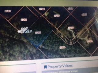 Lot 18 Wood Forest Drive, New Waverly, TX 77358 (MLS #80117079) :: Giorgi Real Estate Group