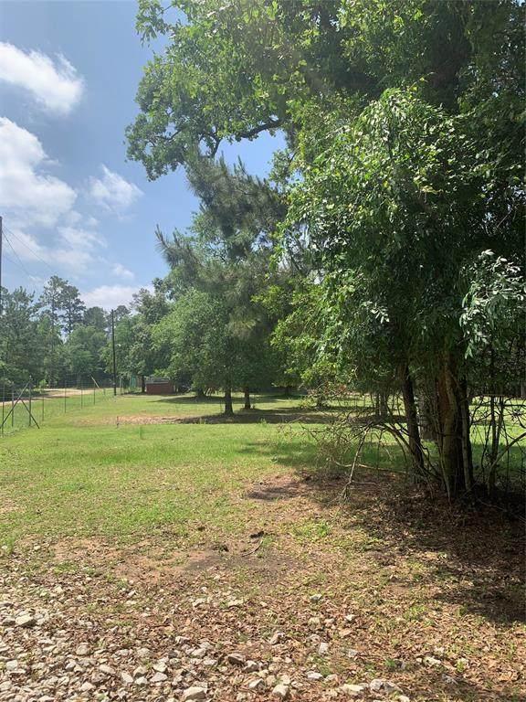 TBD Walnut Tree Lane, Plantersville, TX 77363 (MLS #81307264) :: The Freund Group