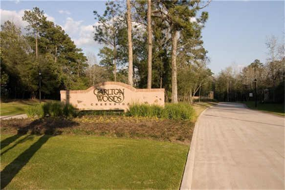 6 Bay Cliff Court, The Woodlands, TX 77389 (MLS #81395239) :: The Home Branch