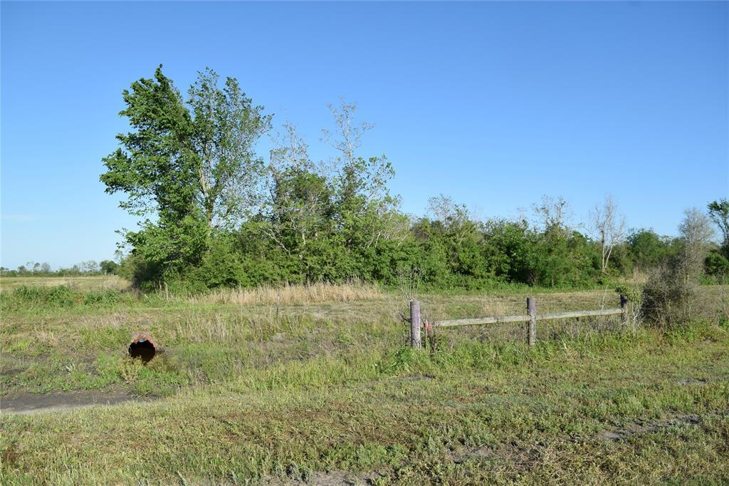 13721 County Road 606A Off - Photo 1