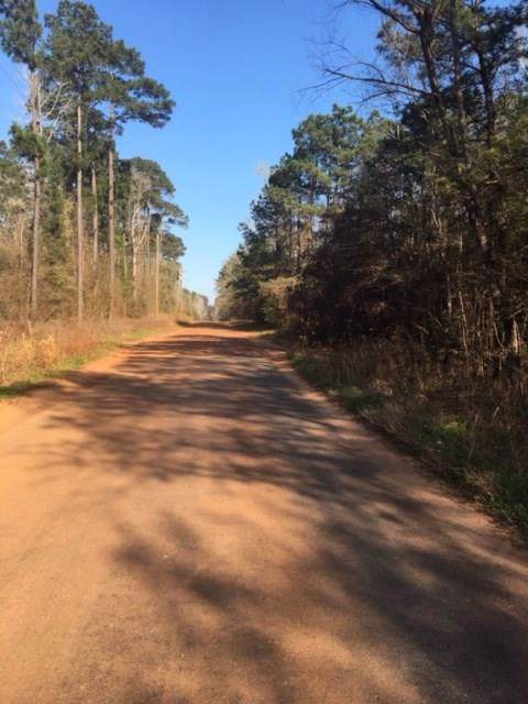 Lots 286 - 293 County Road 2942, Cleveland, TX 77327 (MLS #81942022) :: Ellison Real Estate Team