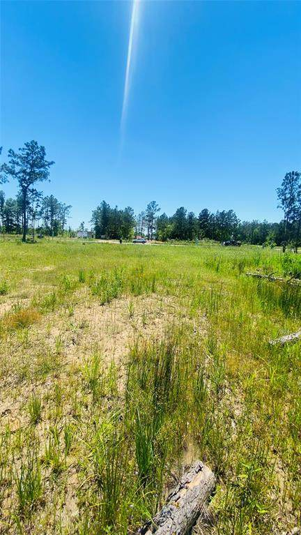 2082 Road 5100 Road, Cleveland, TX 77327 (MLS #82084197) :: Connect Realty