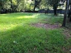 7019 Sidney Street, Houston, TX 77021 (MLS #82246074) :: TEXdot Realtors, Inc.