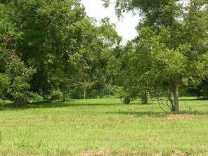 30627 Lower Oxbow Trace, Fulshear, TX 77441 (MLS #82768095) :: Giorgi Real Estate Group