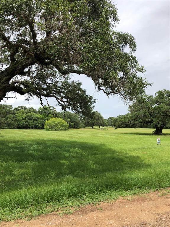 45 Center Tree Drive, Blessing, TX 77419 (MLS #83280403) :: Michele Harmon Team