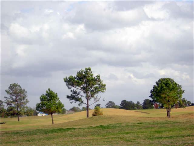 14510 Cypress Links Trail - Photo 1