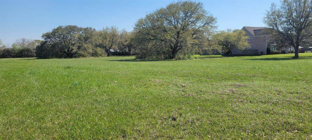 15603 Bayou Oaks Drive - Photo 1